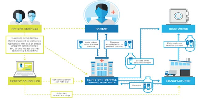 Understanding Pharmaceutical Logistics Validation in a Dynamic Environment